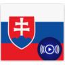 SK RADIO - SLOVENSKÉ ONLINE RÁDIÁ (mobilná app)